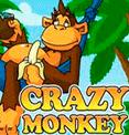 Crazy Monkey