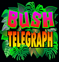 Bush Telegraph Microgaming